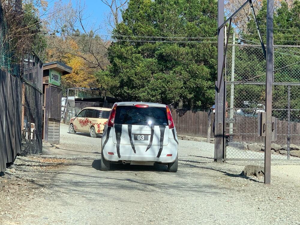 サファリレンタカーの画像